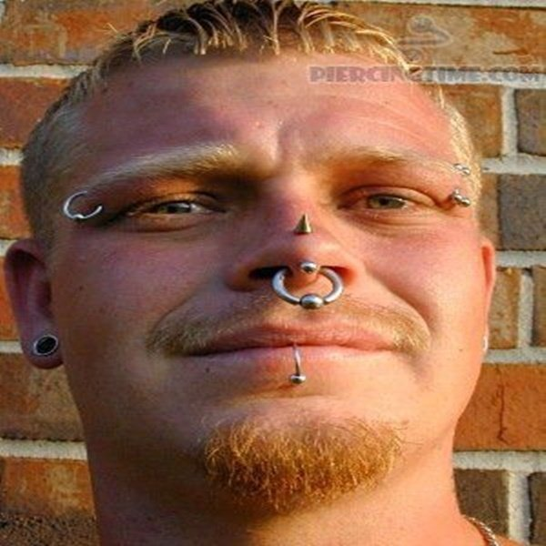 Rhino Piercing The Complete Experience Guide With Meaning